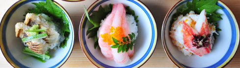 輝らりの姫寿司